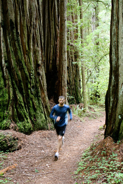 running-in-the-redwoods
